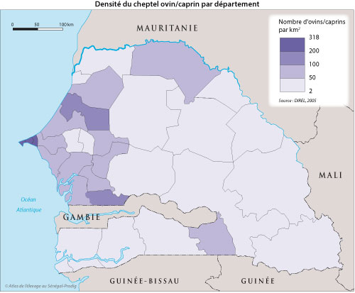 Sénégal-Les territoires de l'élevage-Peut-on cartographier le cheptel national ?-Densité du cheptel ovin/caprin par département