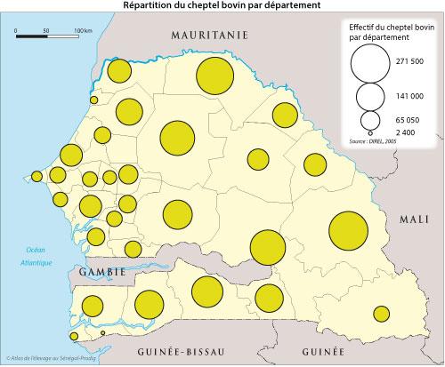 Sénégal-Les territoires de l'élevage-Peut-on cartographier le cheptel national ?-Répartition du cheptel bovin par département