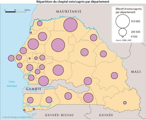 Sénégal-Les territoires de l'élevage-Peut-on cartographier le cheptel national ?-Répartition du cheptel ovin/caprin par département