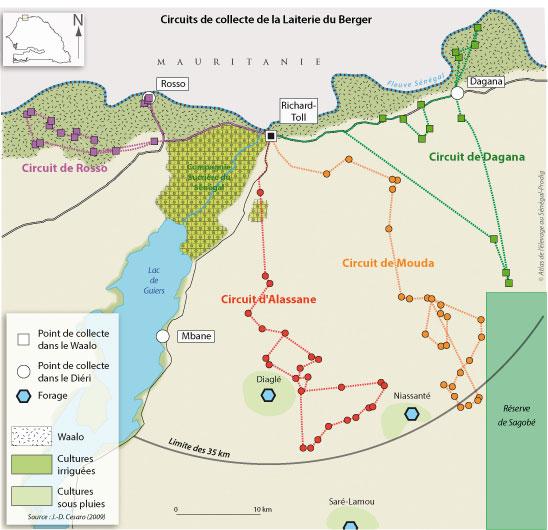 Sénégal-La filière lait, du global au local-La collecte de la Laiterie du Berger-Circuits de collecte de la Laiterie du Berger