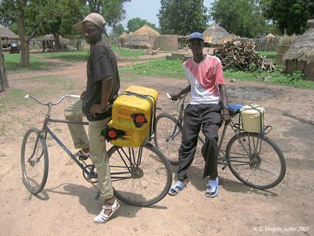 Sénégal-La filière lait, du global au local-Le bassin laitier autour de Kolda-Collecteurs en bicyclette dans la région de Kolda