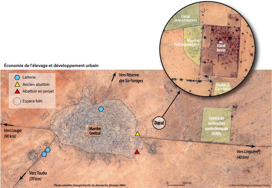 Sénégal-Le commerce de bétail sur pied-Dahra, capitale de l'élevage-Économie de l'élevage et développement urbain