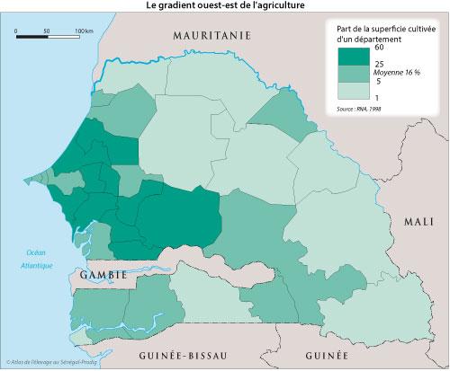 Sénégal-Les territoires de l'élevage-L'élevage et le zonage agro-climatique-Le gradient ouest-est de l'agriculture