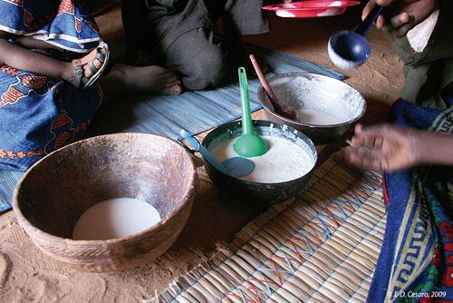 Sénégal-La filière lait, du global au local-Production nationale et unités laitières-Du lait et du lait caillé