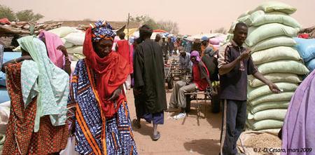 Sénégal-Le commerce de bétail sur pied-Le développmement des marchés hebdomadaires-Une rue de Niassanté le jour du marché