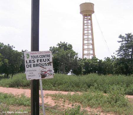 Sénégal-Les territoires de l'élevage-Des tentatives pour territorialiser l'élevage-Pare-feux et forage dans le ranch de Doli