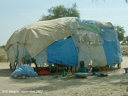 Sénégal-Les territoires de l'élevage-Tranhumances d'hier et d'aujourd'hui-Habitat transhumant autour de Dahra : forme traditionnelle, matériaux récupérés