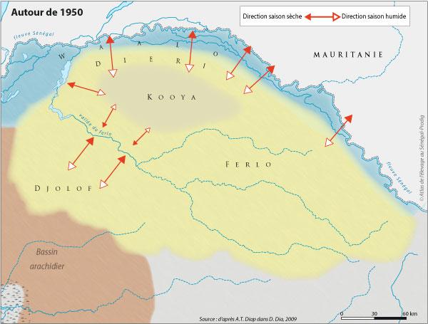 Sénégal-Les territoires de l'élevage-Tranhumances d'hier et d'aujourd'hui-Autour de 1950